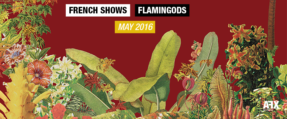 FLAMINGODS : DATES FRANÇAISES MAI 2016